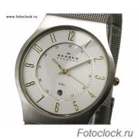 Наручные часы Skagen 233XLSGS