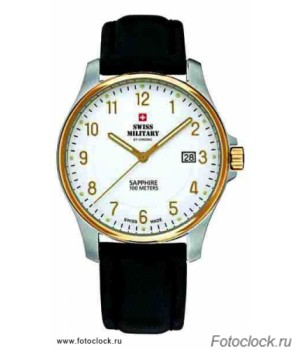 Швейцарские часы Swiss Military by Chrono SM 30137.08 / 20076BI-4L