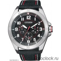 Наручные часы Citizen Eco-Drive BU2030-17E
