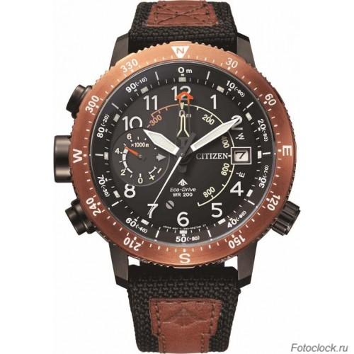 Наручные часы Citizen Eco-Drive BN4049-11E