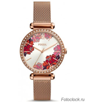 Наручные часы Fossil BQ3648